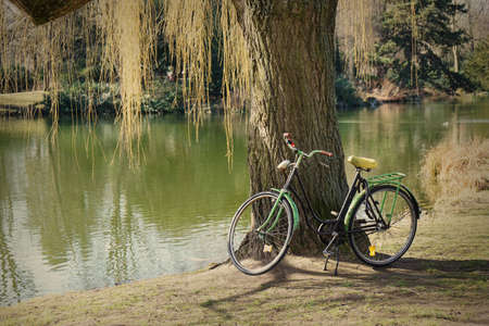 weeping willow: old bike standing beneath weeping willow tree at a lake with retro filter Stock Photo