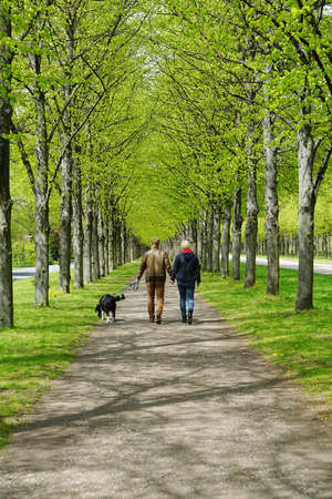 rear view of a young couple taking the dog for a walk photo