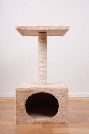 house cat: small cat tree or tower with hideaway scratching post and lookout platform