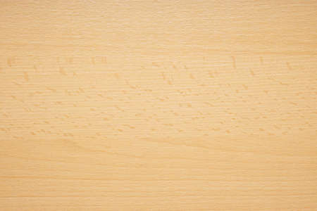 beechwood or beech wood background texture pattern