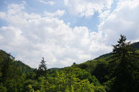 foothill: Harz mountains in Germany, wooded foothills and cloudy sky
