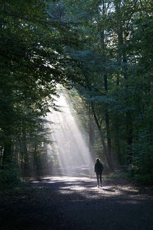 silhouetted: unrecognizable jogger running through dark wood silhouetted against shaft of sunlight