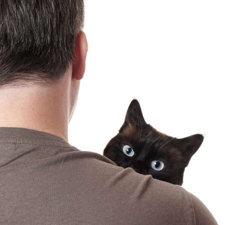 pry: cat peeking over shoulder of unrecognizable pet owner