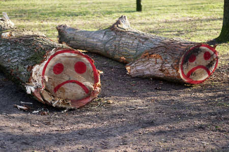 felled tree trunks with sad smiley face graffiti sprayed on them with red paint Stock Photo