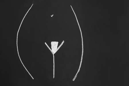 pubic hair style or hairstyle known as landing strip or french bikini wax - simple minimalist line drawing with chalk on blackboard