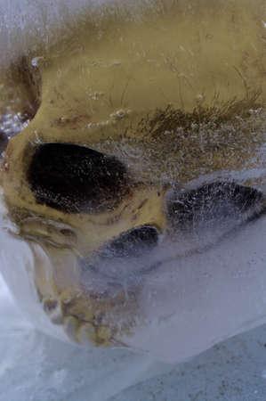 frozen lake: schedel in bevroren Lake