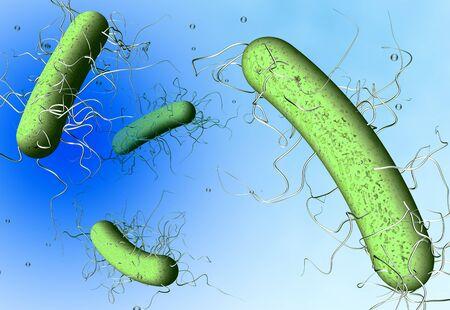 3D illustration showing clostridium difficile bacteria