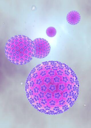 Human papillonmavirus HPV