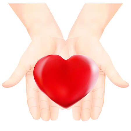 loving hands: Heart in the loving hands. Vector illustration. Isolated on white