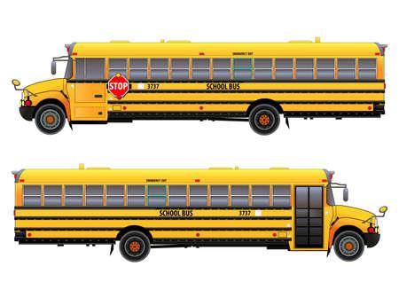 School bus illustration isolated on white background