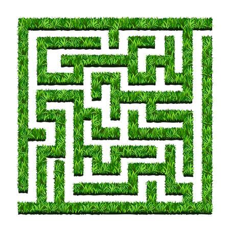 Maze van groene struiken, labyrinttuin. Vector illustratie. Geïsoleerd op een witte achtergrond