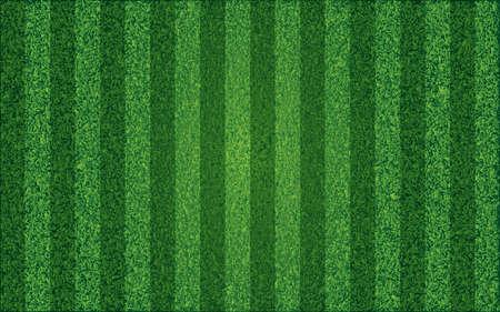 Grass sport field, lanes. Vector illustration Illustration