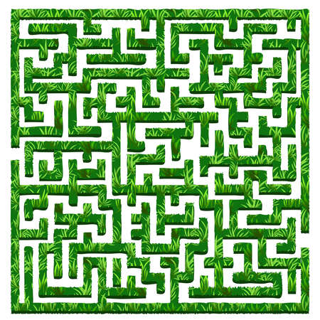 A Vector illustration of green bushes labyrinth / maze. Isolated on white background