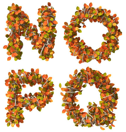 Alphabet of autumn trees  Letters isolated on white background  Added clipping path  N,O,P,Q Imagens