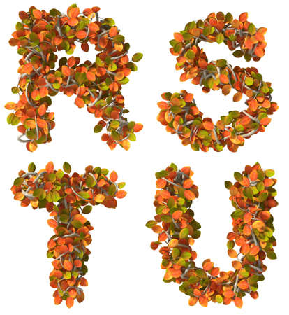 u s a: Alphabet of autumn trees  Letters isolated on white background  Added clipping path  R,S,T,U Stock Photo