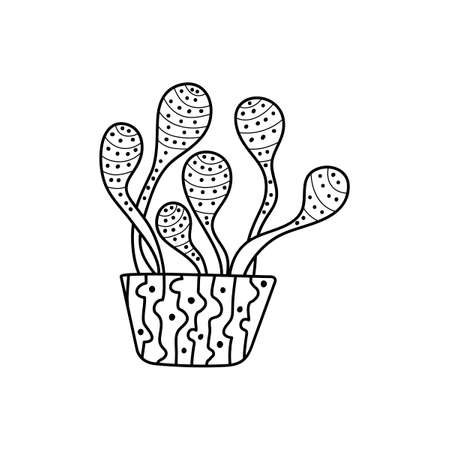 Indoor potted plant, Doodle style . Black and white pattern for coloring books for adults and children. Hand-drawn vector illustration, Ilustrace