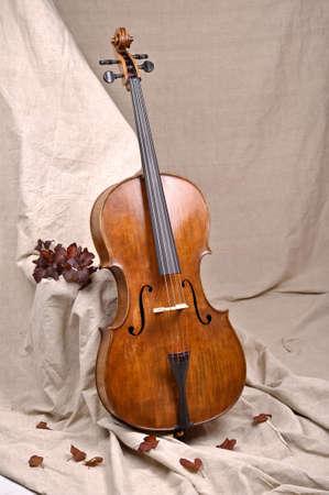 A cello in beige background