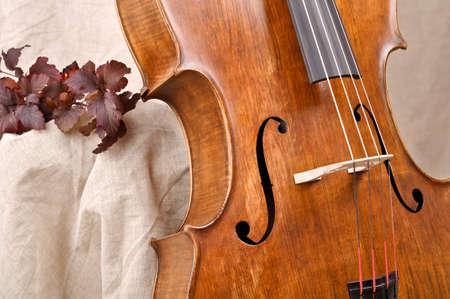 Detail of the cello Stock Photo - 18048605