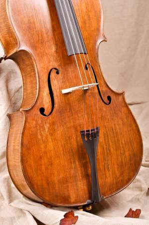 violoncello: Close up of a violoncello on beige background