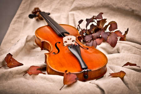 necking: Isolated violin in fall season Stock Photo