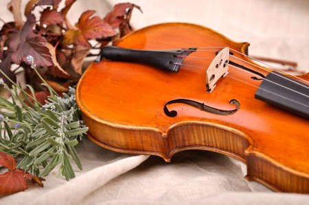 Violin and autumn leaves on brown background.