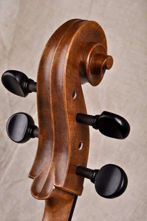 Detail of the head of a cello photo