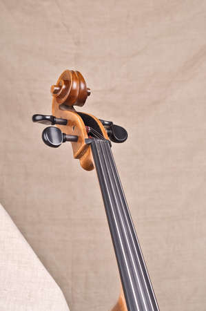 A neck and scroll of the cello photo