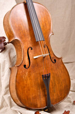 Close up of a violoncello on beige background photo