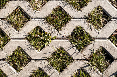 combined: concrete pattern combined with grass Stock Photo
