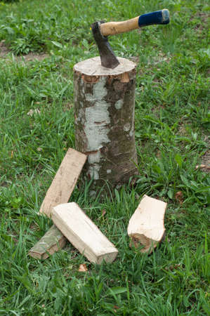 log basket: Axe and wooden trees logs after being cut on grass Stock Photo