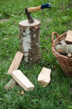 Axe and wooden trees logs after being cut on grass Stockfoto
