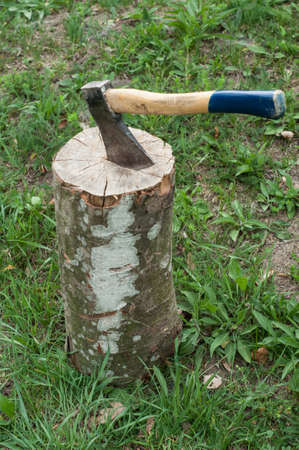 Cut log fire wood and old axe, environmental concept