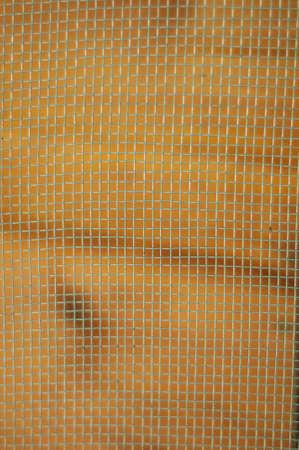 mesh wire Stock Photo