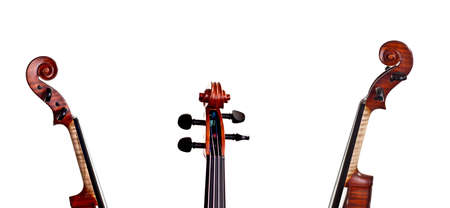 Neck and scroll of the violin in different positions - a collage of art instrument