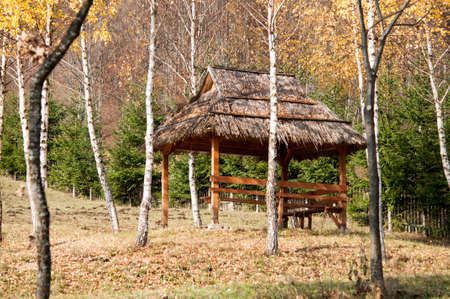 Wooden gazebo in the forest for relaxing photo