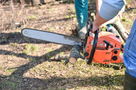 Lumberjack working with chainsaw, cutting wood. Selective focus photo