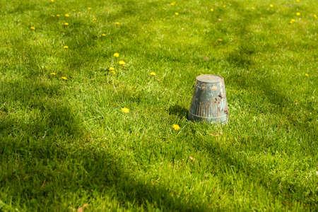 cabeza abajo: Huerto del resorte - pote boca abajo en la hierba volcado, copyspace