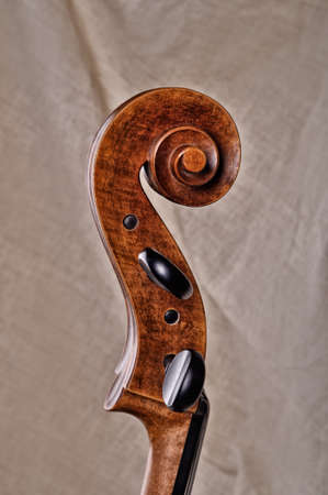 Close up of the head of a cello