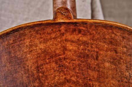 violoncello: close up of a violoncello back