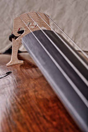 tilt views: close up of a violoncello isolated on beige background Stock Photo