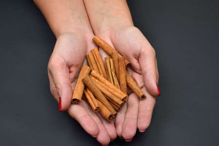 flavoring: Womans hands holding brown pods cinnamon isolated on black background. Spice. Taste. Cooking. Food and beverage flavoring Stock Photo
