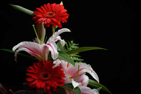 side lighting: Beautiful bouquet made from red gerbera and white lilies put to one side, with room for text on black background. Composition of colors. Selective focus. Dramatic lighting