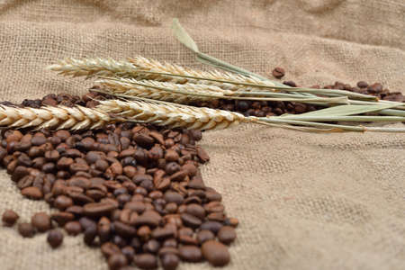 Roasted coffee beans on brown jute background, with several threads of wheat on it. Rustic image. Morning pleasure. Still life. Selective focus. Copy space