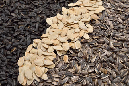 Close up image of different sunflower and pumpkin seeds. Health. Selective focus