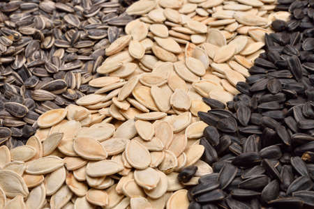 Macro image of different sunflower and pumpkin seeds. Health. Selective focus
