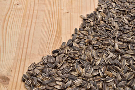 Pile of striped sunflower seeds dried on a wooden background. Copy space