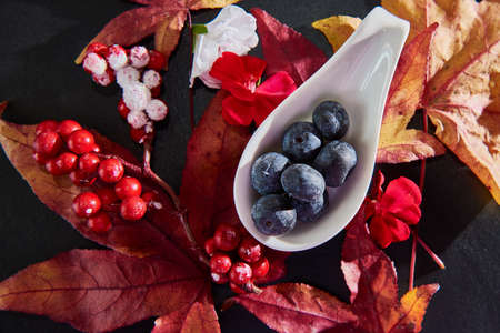 Red and Blue Berries with maple leafs and blossoms arranged on a dark slate plate.