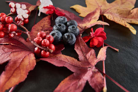 light slate gray: Red and Blue Berries with maple leafs and blossoms arranged on a dark slate plate.