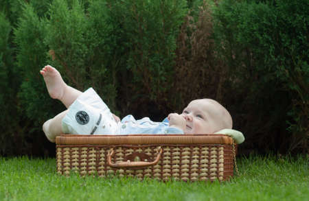 Baby in the suitcase on the grass photo