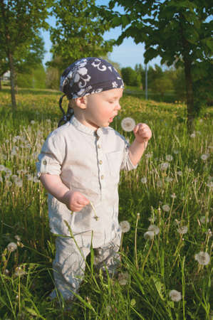 Awesome child with dandelion in summer meadow photo